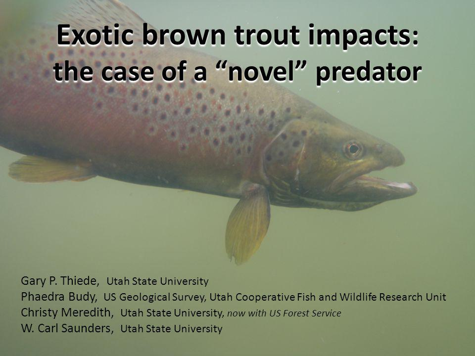 Exotic brown trout impacts : the case of a novel predator Gary P.