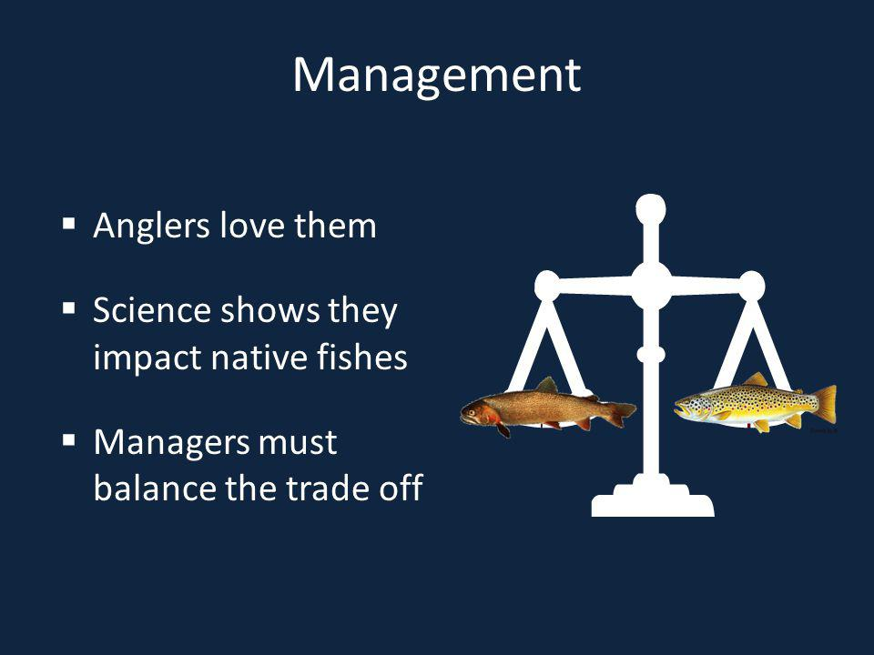 Management Anglers love them Science shows they impact native fishes Managers must balance the trade off