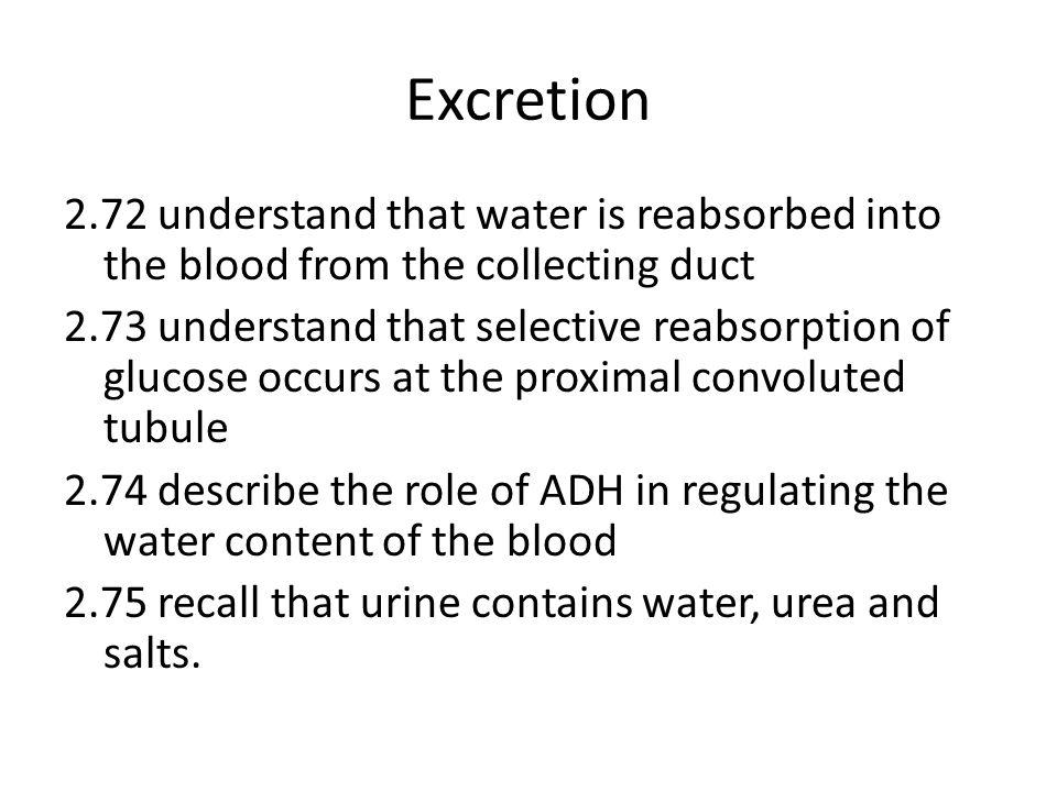 Excretion 2.72 understand that water is reabsorbed into the blood from the collecting duct 2.73 understand that selective reabsorption of glucose occurs at the proximal convoluted tubule 2.74 describe the role of ADH in regulating the water content of the blood 2.75 recall that urine contains water, urea and salts.