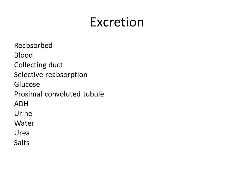 Excretion Reabsorbed Blood Collecting duct Selective reabsorption Glucose Proximal convoluted tubule ADH Urine Water Urea Salts
