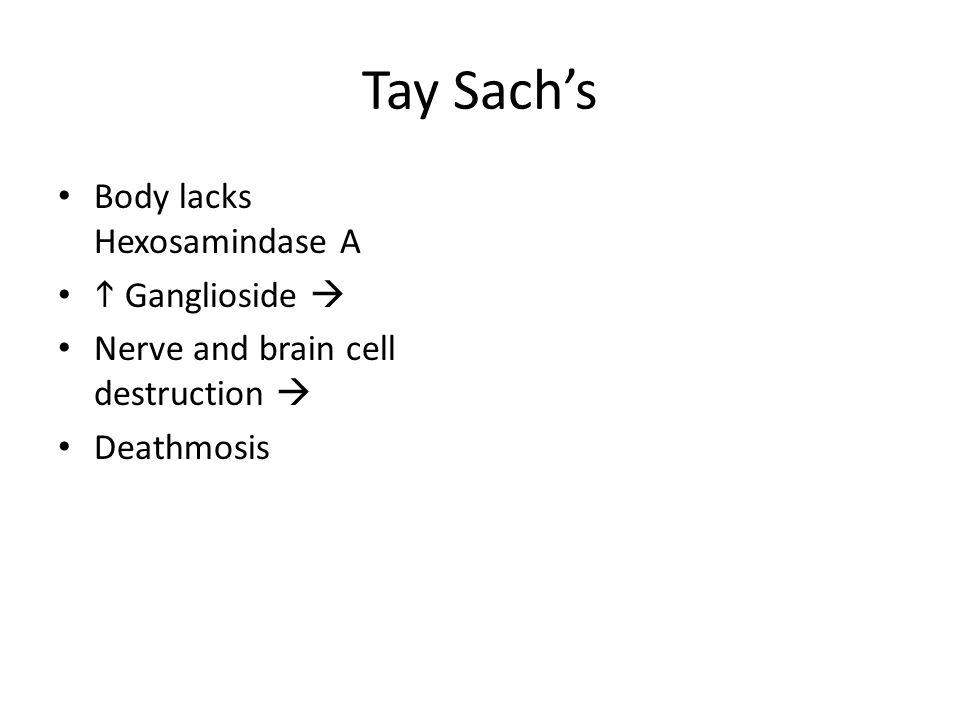 Tay Sachs Body lacks Hexosamindase A Ganglioside Nerve and brain cell destruction Deathmosis