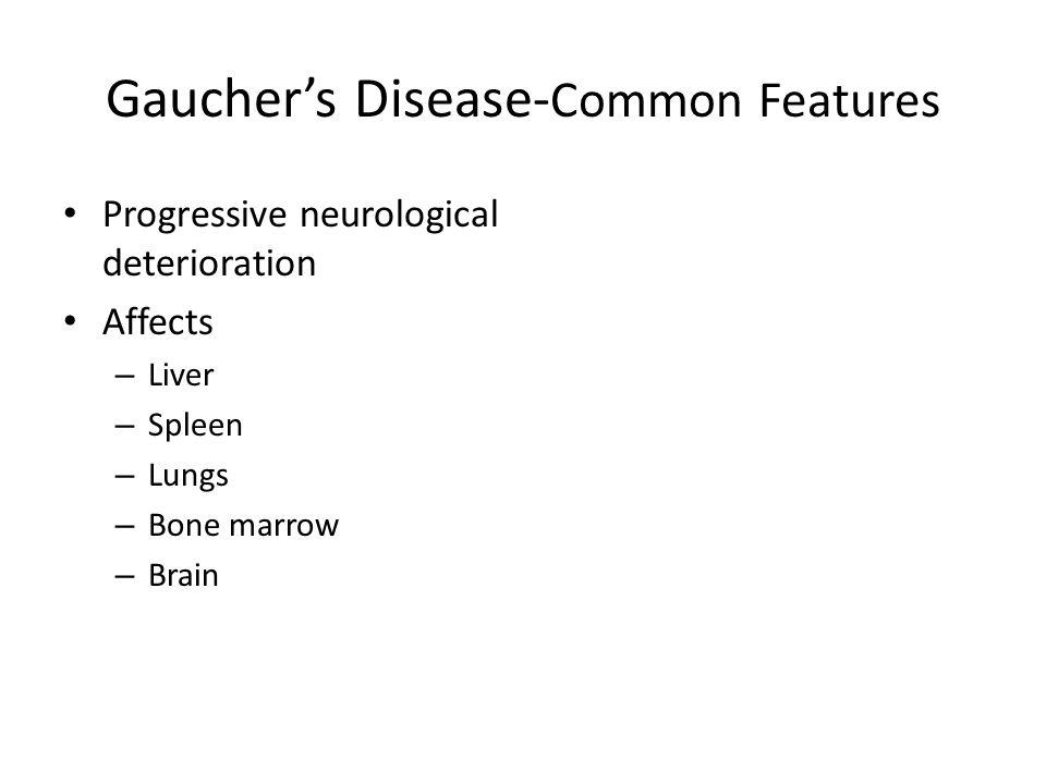 Gauchers Disease- Common Features Progressive neurological deterioration Affects – Liver – Spleen – Lungs – Bone marrow – Brain