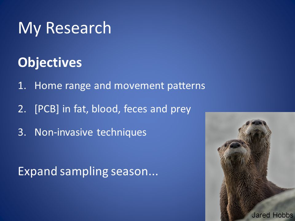 My Research Objectives 1.Home range and movement patterns 2.[PCB] in fat, blood, feces and prey 3.Non-invasive techniques Expand sampling season...