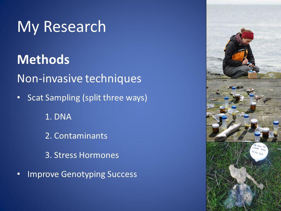 My Research Methods Non-invasive techniques Scat Sampling (split three ways) 1.