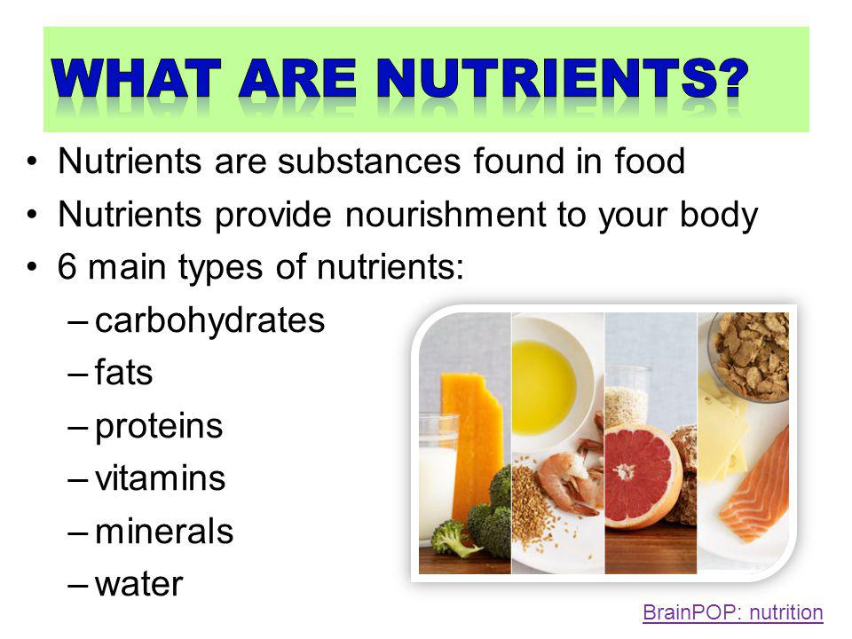Nourishment and energy contained in food helps the body to keep cells, tissues and organs healthy.