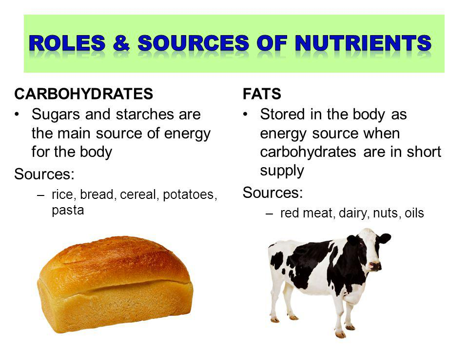 PROTEINS Build and repair body tissue Sources: –meat, eggs, dairy, beans, nuts VITAMINS Help carry out life functions like growth and reproduction Sources: –fruits and vegetables