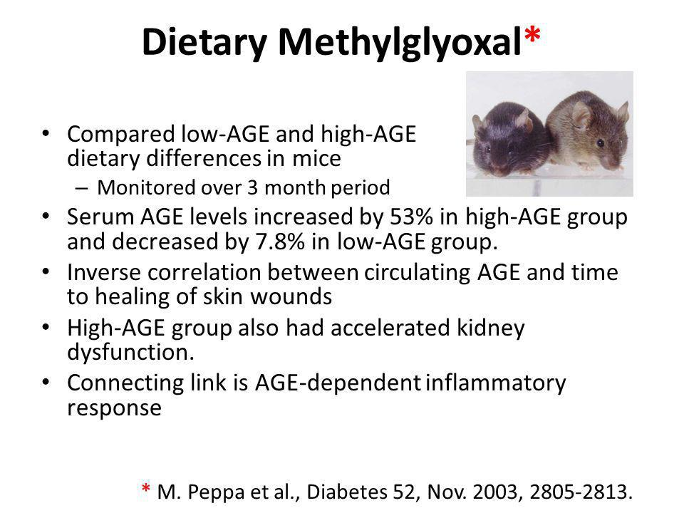 Dietary Methylglyoxal* Compared low-AGE and high-AGE dietary differences in mice – Monitored over 3 month period Serum AGE levels increased by 53% in