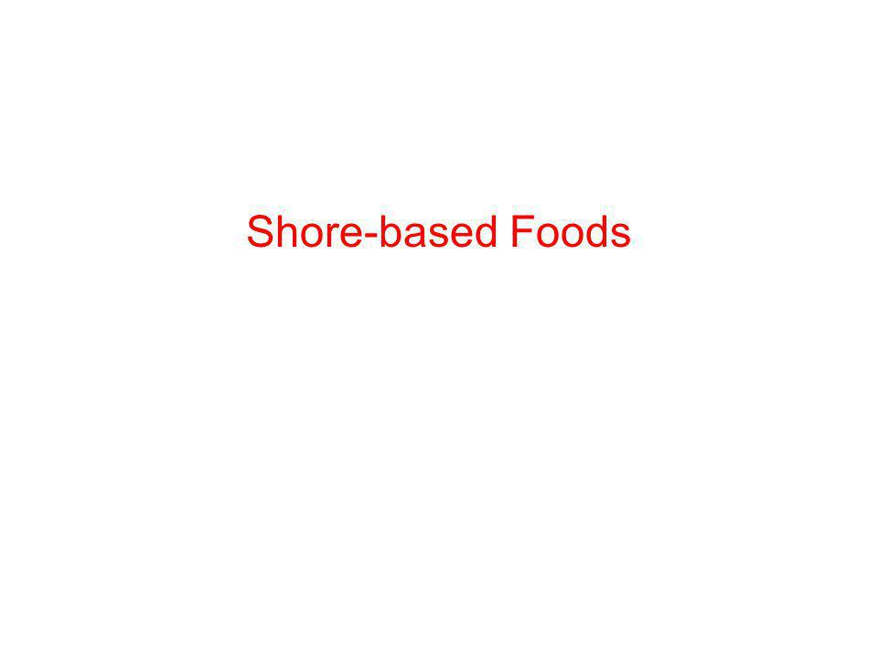 Shore-based Foods