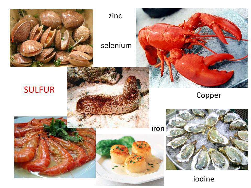 zinc iron Copper selenium iodine SULFUR