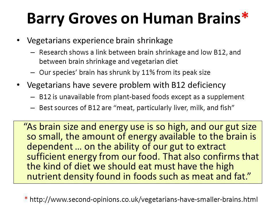 Barry Groves on Human Brains* Vegetarians experience brain shrinkage – Research shows a link between brain shrinkage and low B12, and between brain sh