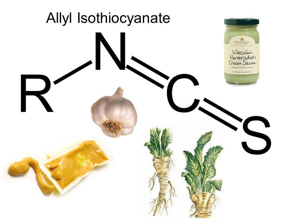 Healthy Spices! Horseradish garlic mustard? Allyl Isothiocyanate