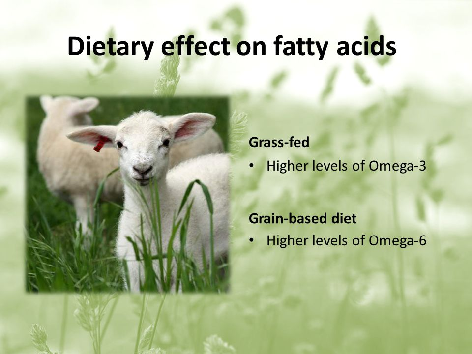 Dietary effect on fatty acids Grass-fed Higher levels of Omega-3 Grain-based diet Higher levels of Omega-6