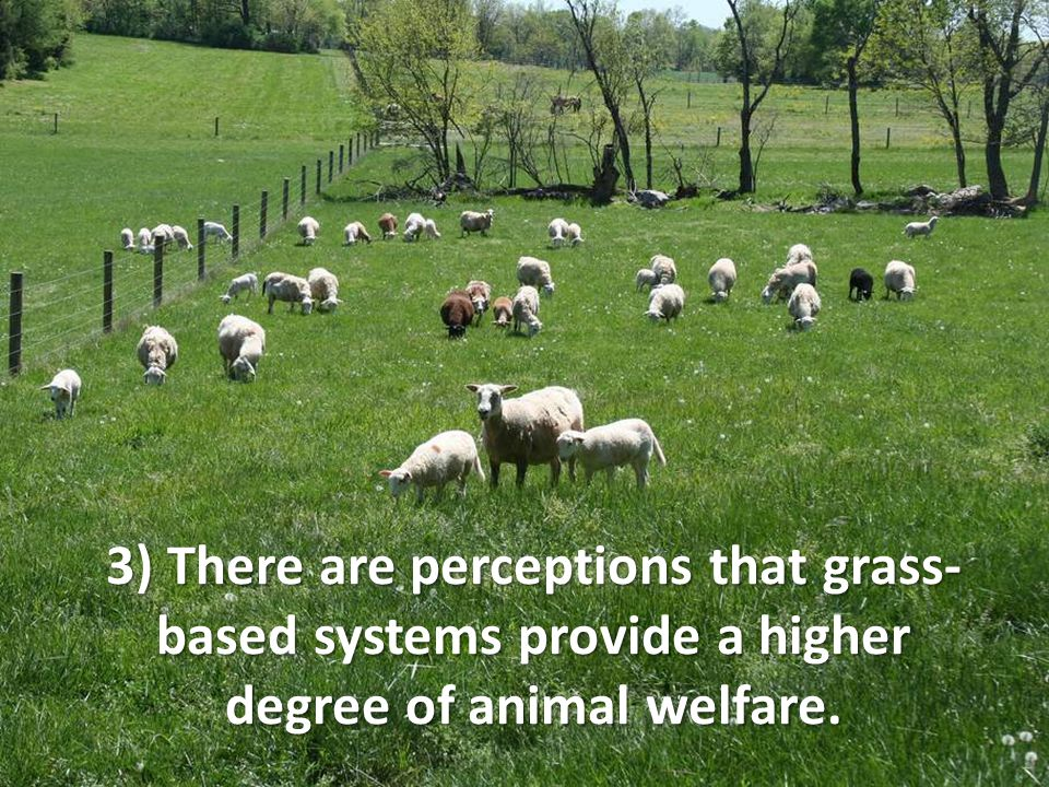 3) There are perceptions that grass- based systems provide a higher degree of animal welfare.