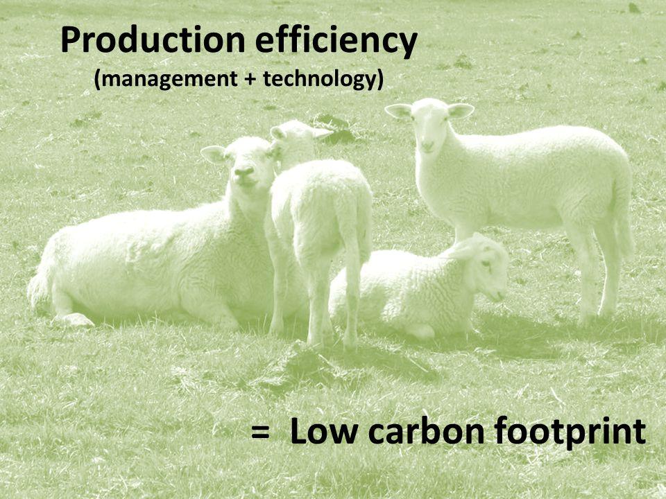 = Low carbon footprint Production efficiency (management + technology)