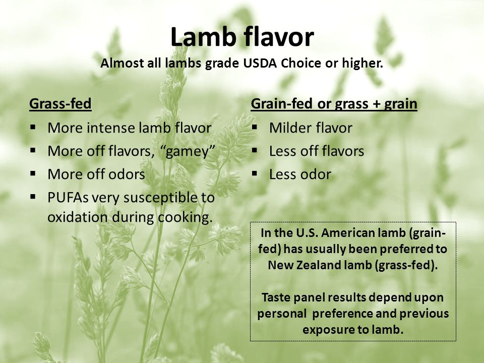 Lamb flavor Almost all lambs grade USDA Choice or higher.