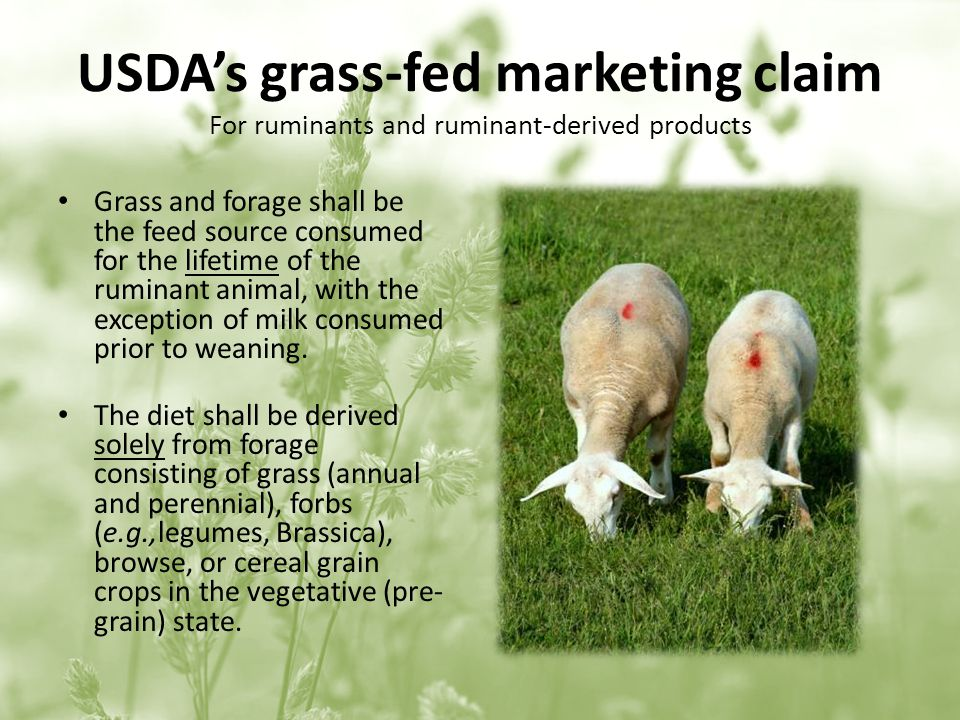 USDAs grass-fed marketing claim For ruminants and ruminant-derived products Grass and forage shall be the feed source consumed for the lifetime of the ruminant animal, with the exception of milk consumed prior to weaning.