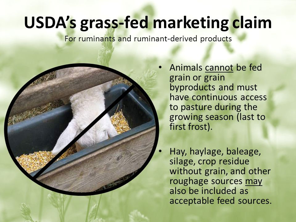 USDAs grass-fed marketing claim For ruminants and ruminant-derived products Animals cannot be fed grain or grain byproducts and must have continuous access to pasture during the growing season (last to first frost).