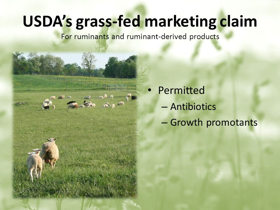 USDAs grass-fed marketing claim For ruminants and ruminant-derived products Permitted – Antibiotics – Growth promotants