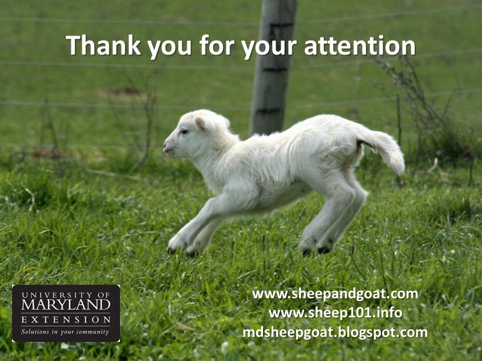 Thank you for your attention www.sheepandgoat.com www.sheep101.info mdsheepgoat.blogspot.com