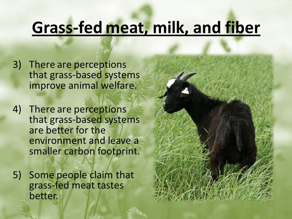 Grass-fed meat, milk, and fiber 3)There are perceptions that grass-based systems improve animal welfare.