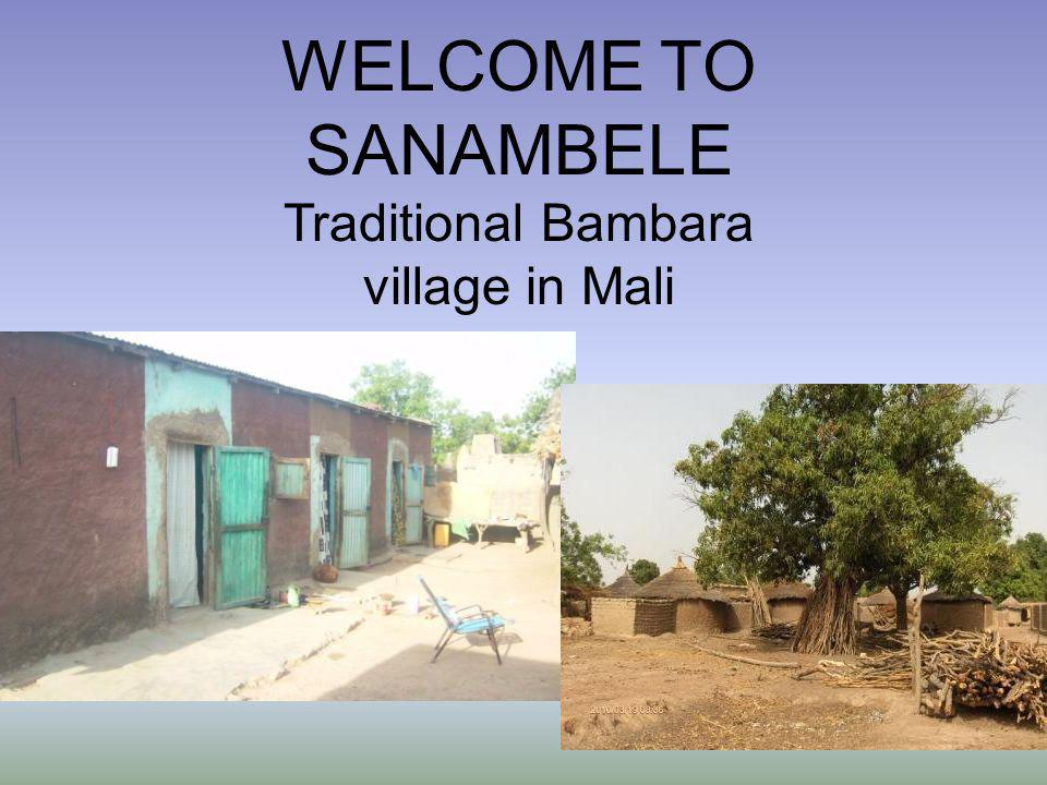 WELCOME TO SANAMBELE Traditional Bambara village in Mali
