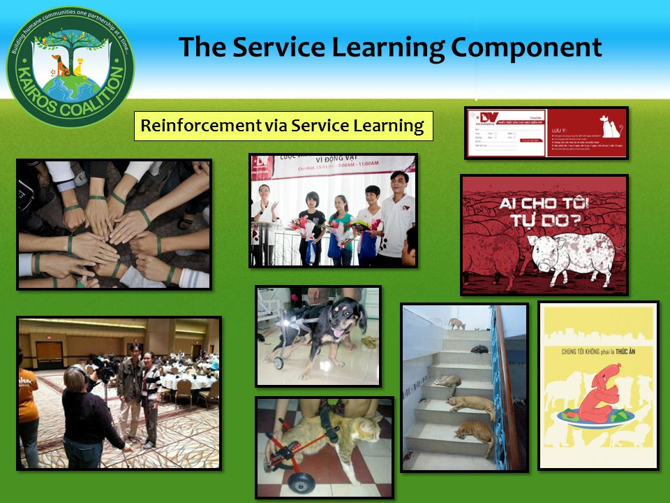 The Service Learning Component Reinforcement via Service Learning
