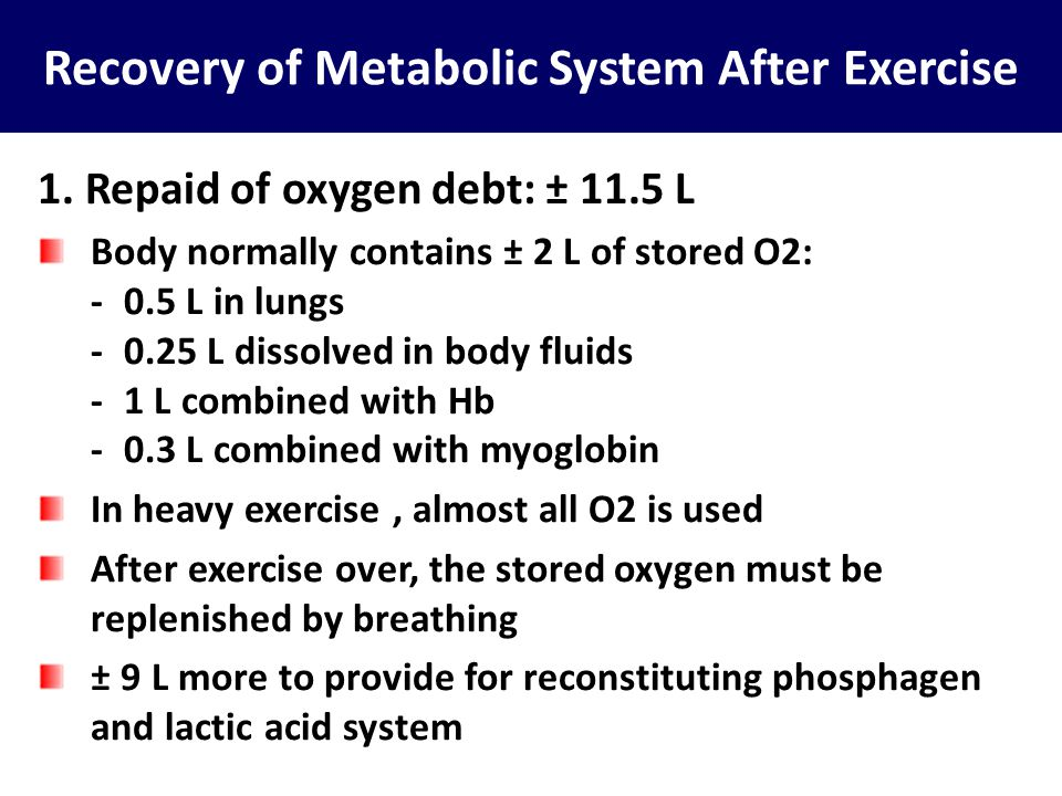 Recovery of Metabolic System After Exercise 1. Repaid of oxygen debt: ± 11.5 L Body normally contains ± 2 L of stored O2: -0.5 L in lungs -0.25 L diss