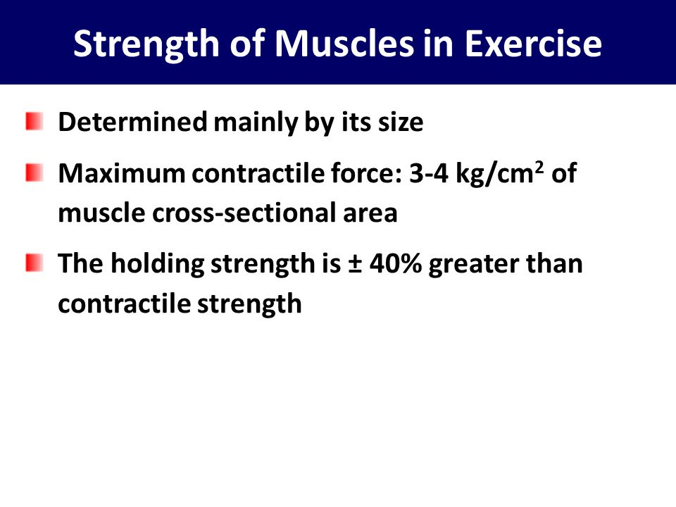 Strength of Muscles in Exercise Determined mainly by its size Maximum contractile force: 3-4 kg/cm 2 of muscle cross-sectional area The holding streng