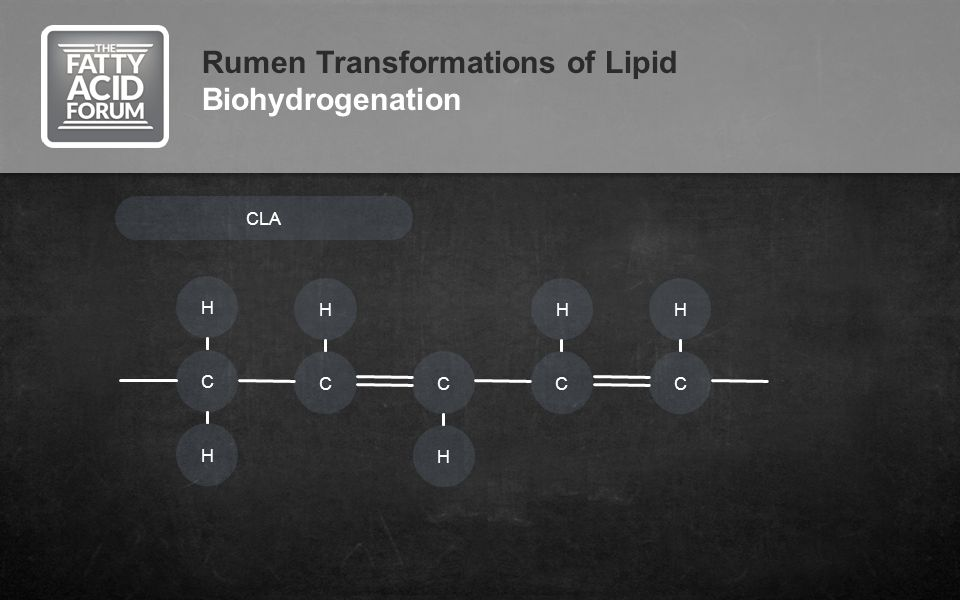 Rumen Transformations of Lipid Biohydrogenation H C H C H C H H C H C CLA
