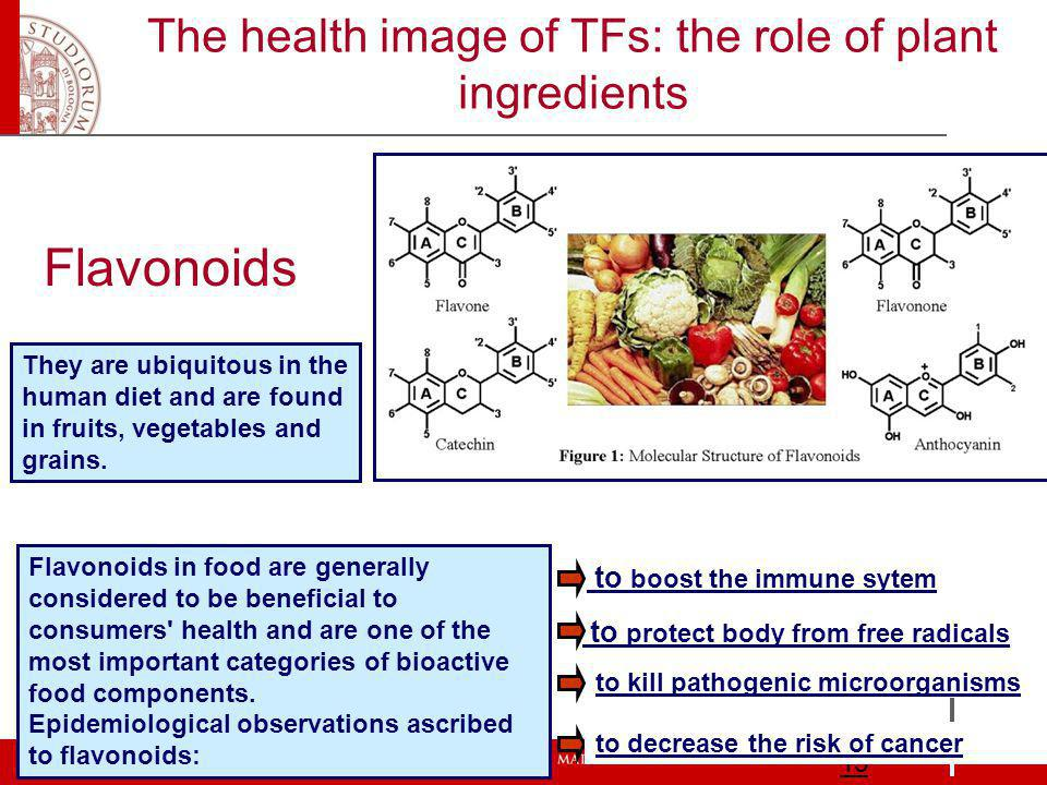 The health image of TFs: the role of plant ingredients 15 They are ubiquitous in the human diet and are found in fruits, vegetables and grains.