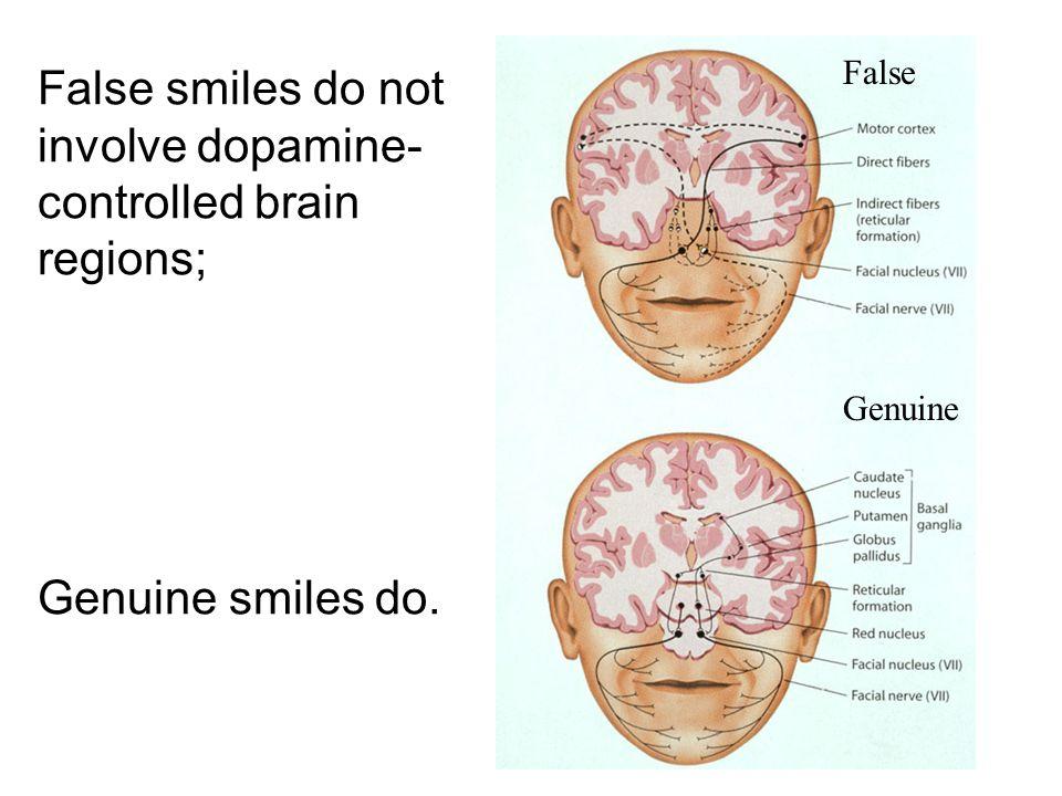 False smiles do not involve dopamine- controlled brain regions; Genuine smiles do. False Genuine
