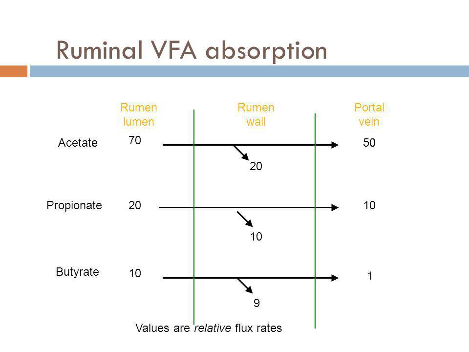 Ruminal VFA absorption Rumen lumen Rumen wall Portal vein Acetate Propionate Butyrate 50 10 1 70 20 10 Values are relative flux rates 20 10 9