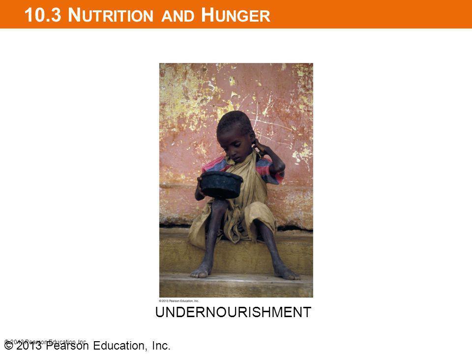 10.3 N UTRITION AND H UNGER © 2013 Pearson Education, Inc. UNDERNOURISHMENT © 2013 Pearson Education, Inc.