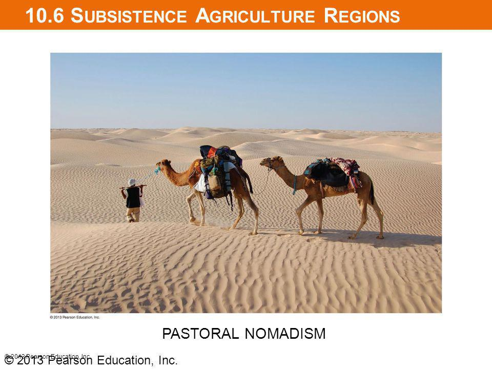 10.6 S UBSISTENCE A GRICULTURE R EGIONS © 2013 Pearson Education, Inc. PASTORAL NOMADISM © 2013 Pearson Education, Inc.