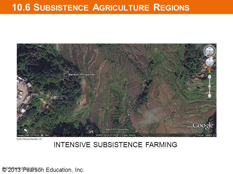 10.6 S UBSISTENCE A GRICULTURE R EGIONS © 2013 Pearson Education, Inc. INTENSIVE SUBSISTENCE FARMING © 2013 Pearson Education, Inc.