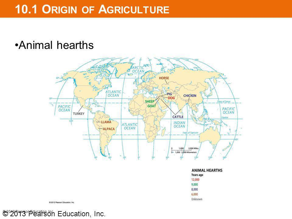 10.1 O RIGIN OF A GRICULTURE Animal hearths © 2013 Pearson Education, Inc.