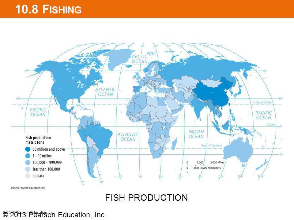 10.8 F ISHING © 2013 Pearson Education, Inc. FISH PRODUCTION © 2013 Pearson Education, Inc.