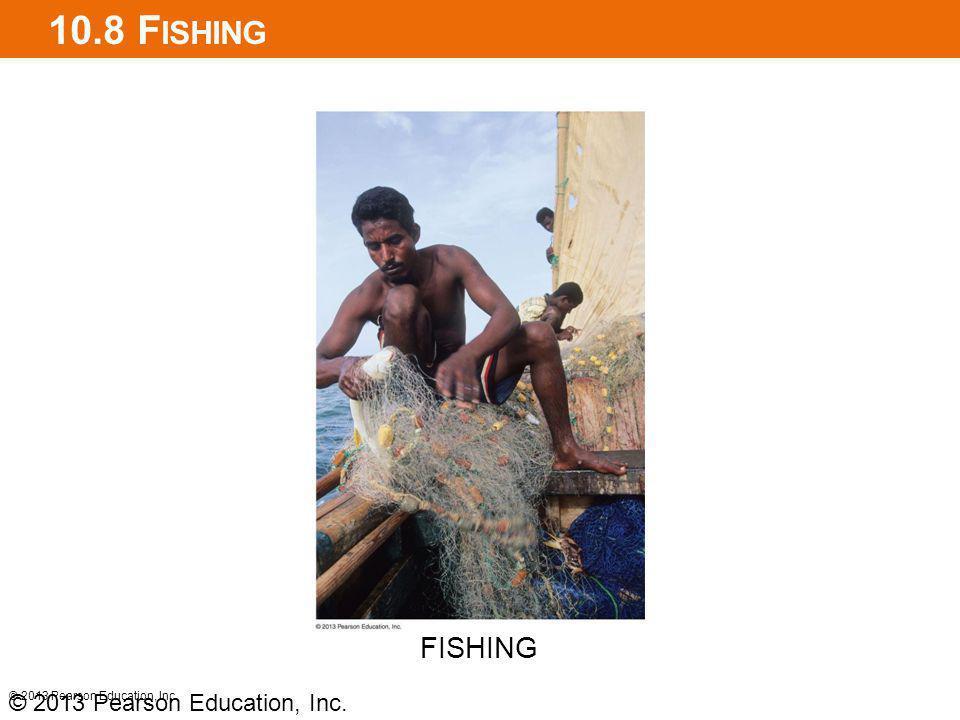 10.8 F ISHING © 2013 Pearson Education, Inc. FISHING © 2013 Pearson Education, Inc.