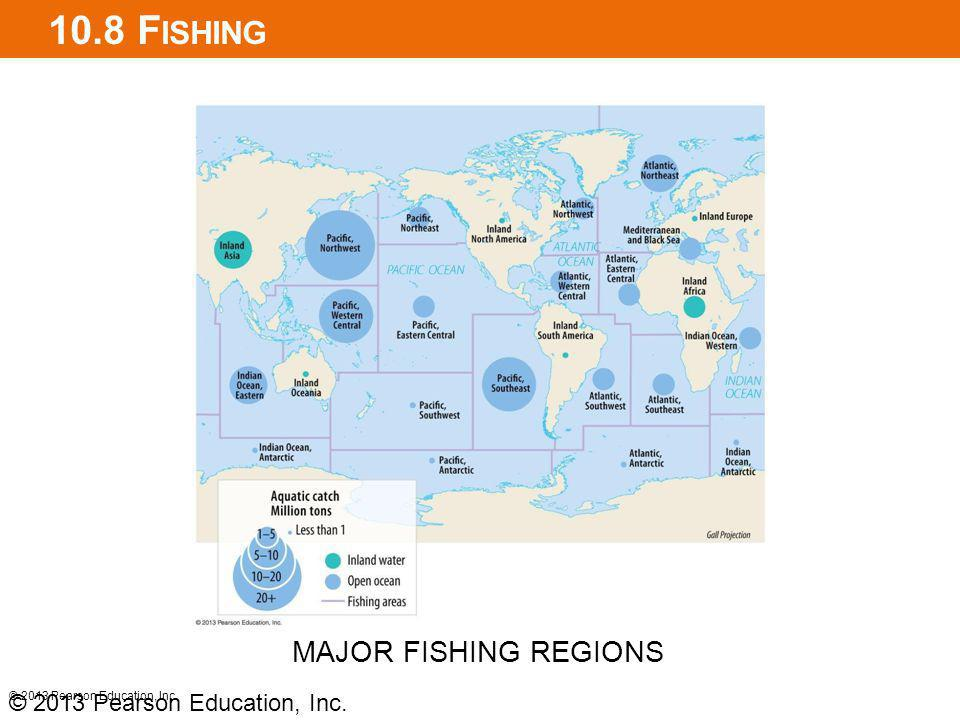 10.8 F ISHING © 2013 Pearson Education, Inc. MAJOR FISHING REGIONS © 2013 Pearson Education, Inc.