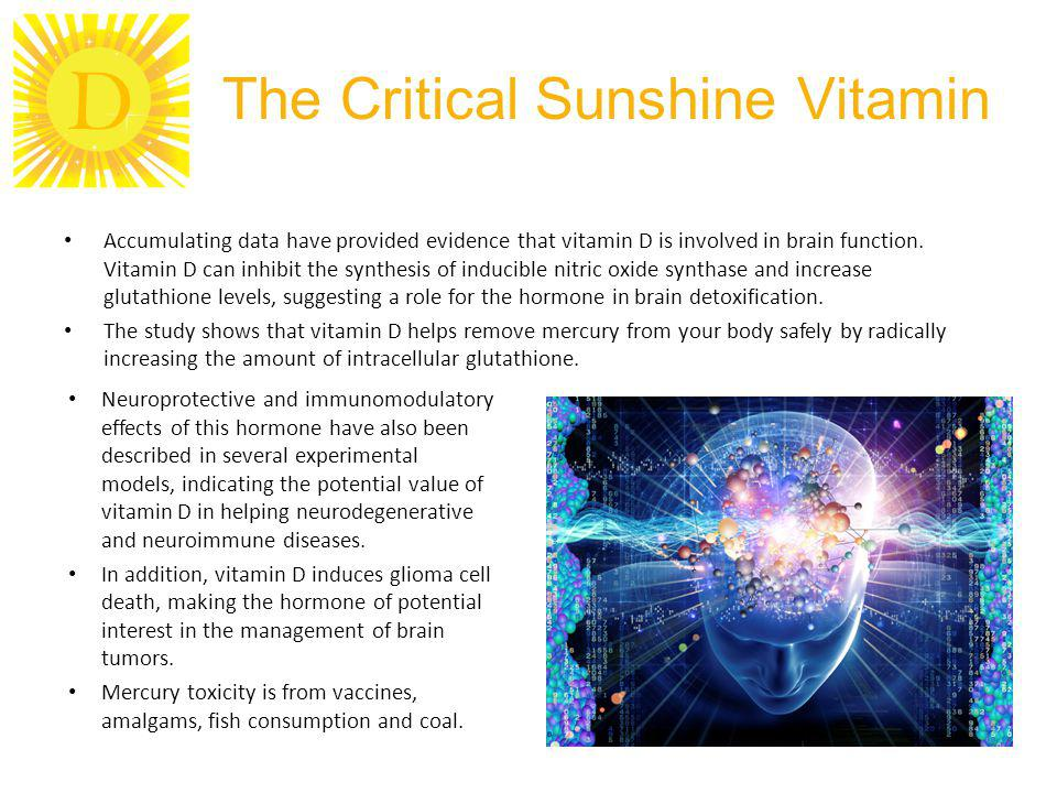D The Critical Sunshine Vitamin Accumulating data have provided evidence that vitamin D is involved in brain function.