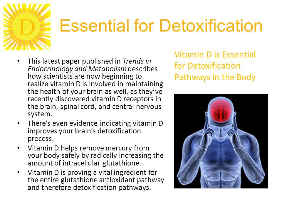 D Essential for Detoxification This latest paper published in Trends in Endocrinology and Metabolism describes how scientists are now beginning to rea
