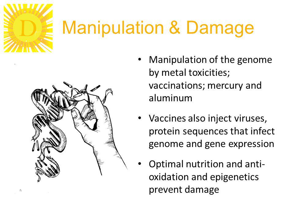 D Manipulation & Damage Manipulation of the genome by metal toxicities; vaccinations; mercury and aluminum Vaccines also inject viruses, protein sequences that infect genome and gene expression Optimal nutrition and anti- oxidation and epigenetics prevent damage