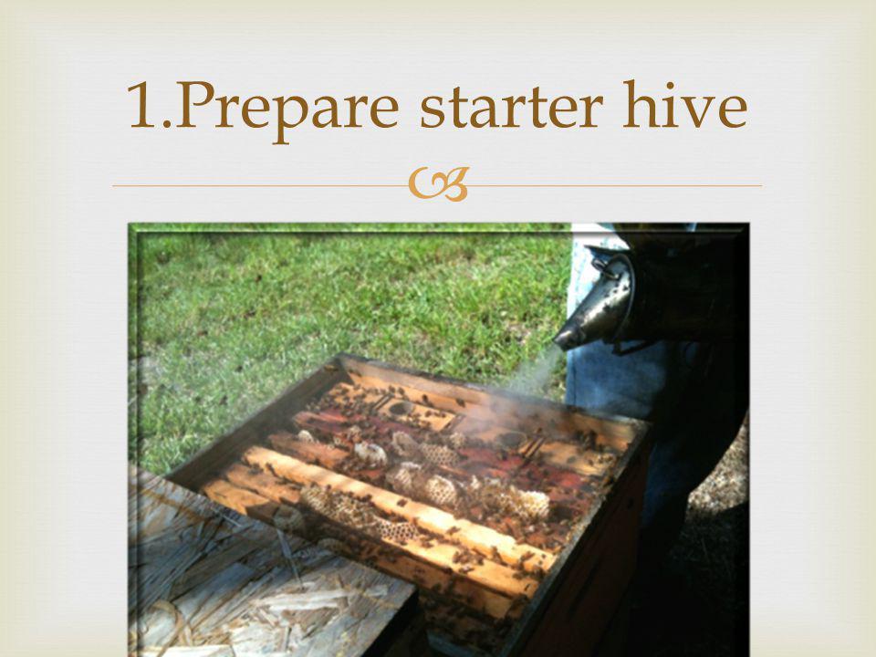 1.Prepare starter hive