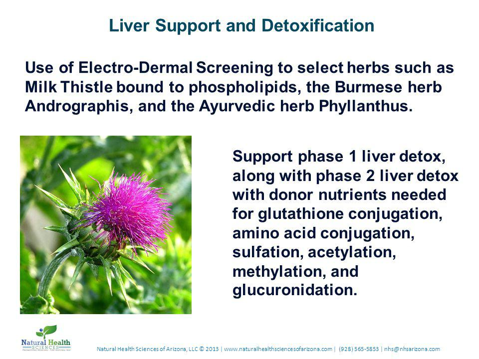 Use of Electro-Dermal Screening to select herbs such as Milk Thistle bound to phospholipids, the Burmese herb Andrographis, and the Ayurvedic herb Phyllanthus.
