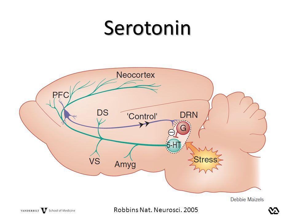 Serotonin Robbins Nat. Neurosci. 2005