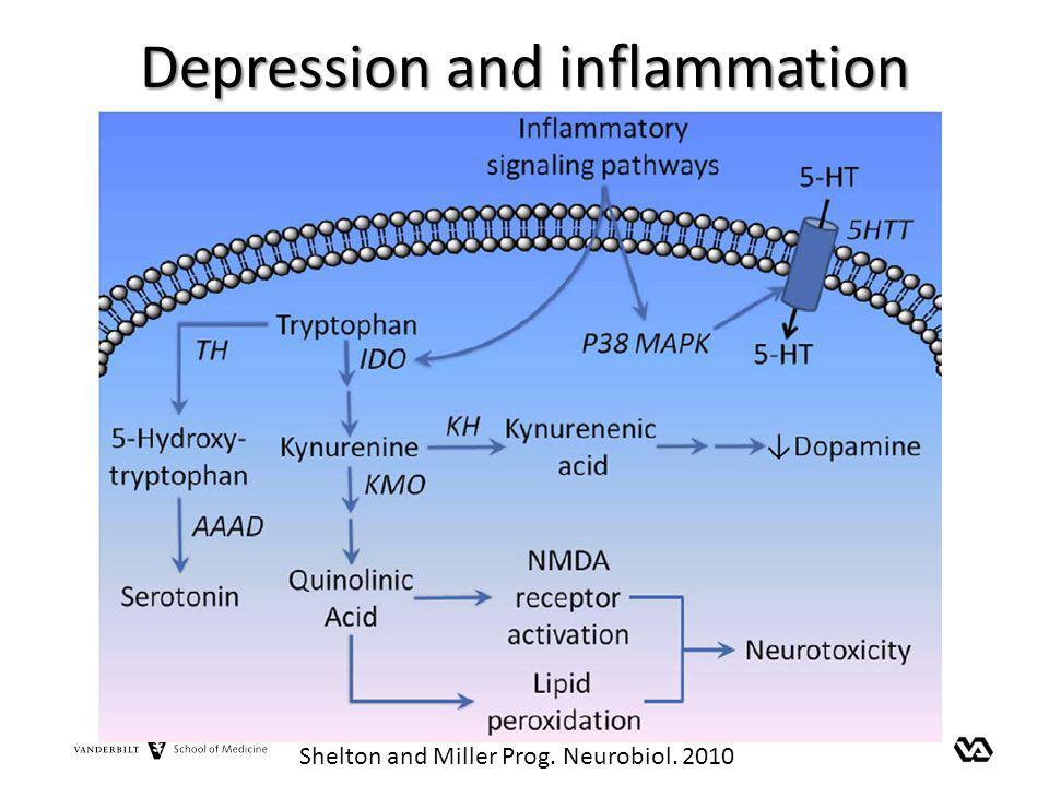 Depression and inflammation Shelton and Miller Prog. Neurobiol. 2010