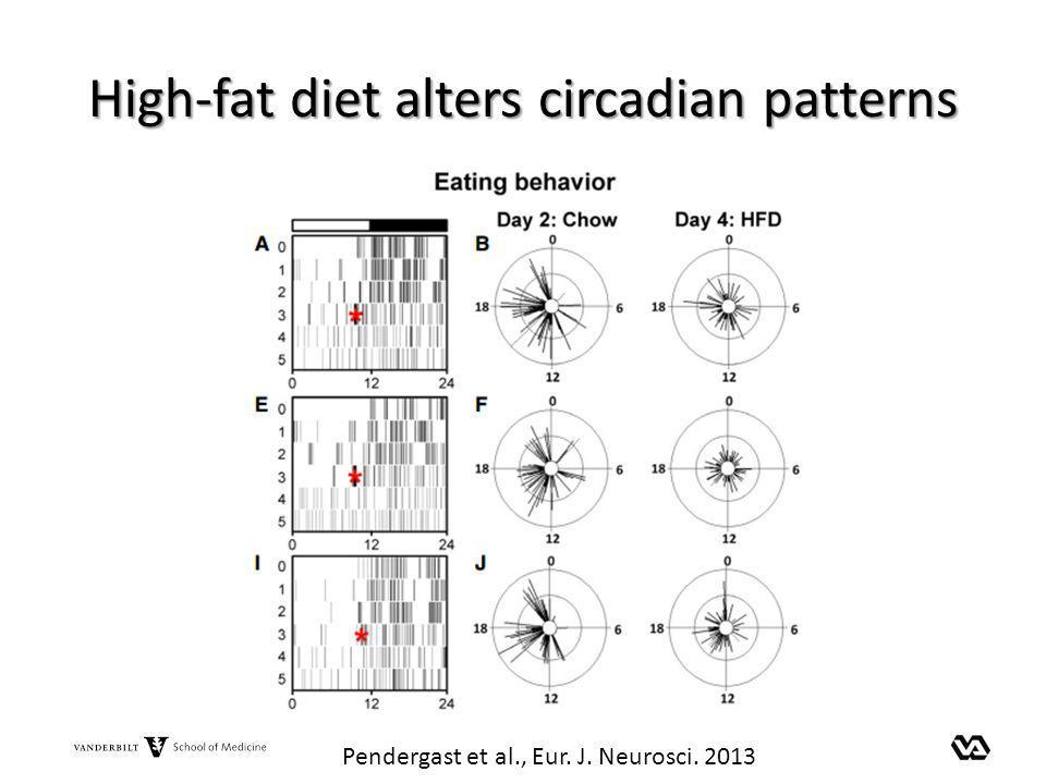 High-fat diet alters circadian patterns Pendergast et al., Eur. J. Neurosci. 2013