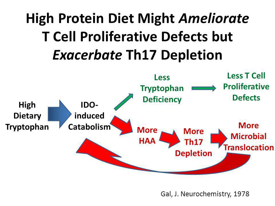 High Dietary Tryptophan IDO- induced Catabolism Less Tryptophan Deficiency Less T Cell Proliferative Defects More Microbial Translocation More HAA Mor
