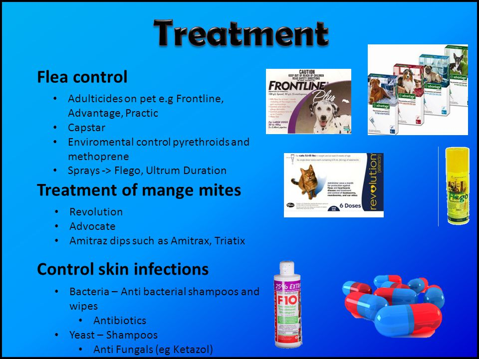 Flea control Adulticides on pet e.g Frontline, Advantage, Practic Capstar Enviromental control pyrethroids and methoprene Sprays -> Flego, Ultrum Duration Treatment of mange mites Revolution Advocate Amitraz dips such as Amitrax, Triatix Control skin infections Bacteria – Anti bacterial shampoos and wipes Antibiotics Yeast – Shampoos Anti Fungals (eg Ketazol)