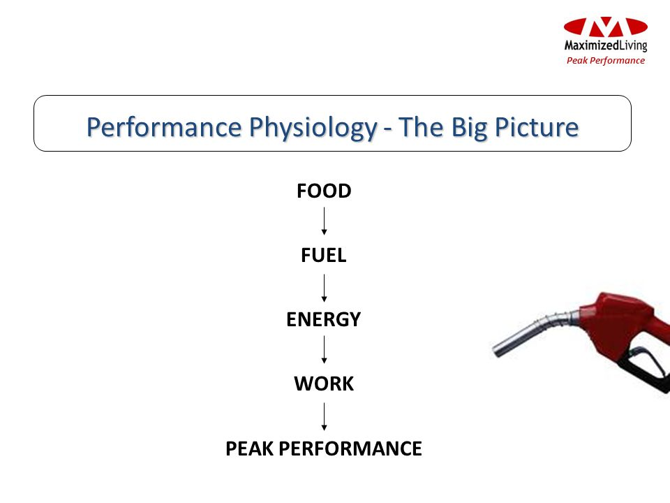 Performance Physiology - The Big Picture FOOD FUEL ENERGY WORK PEAK PERFORMANCE Peak Performance